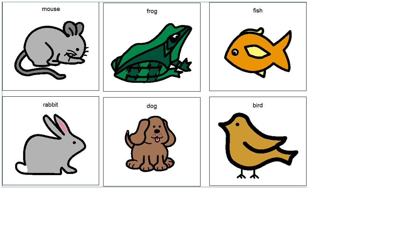 Animal Boardmaker Symbols